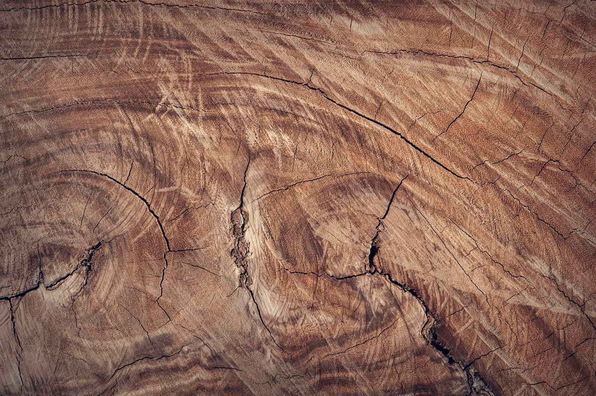 Łuparka do drewna hydrauliczna- jaką wybrać